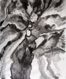 Monocromia 22
