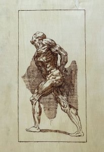 PIROGRABADO ANATOMIA HUMANA