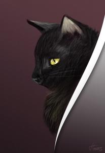 Felino friend