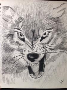 Dibujo Artístico Lápiz Página 8