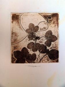Grabados de botánica