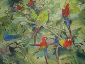 010 parrots 120x161 2009.jpg