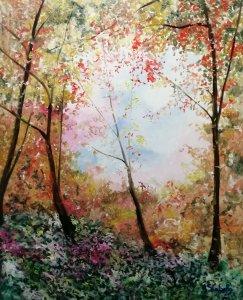 Claridad dentro de un bosque
