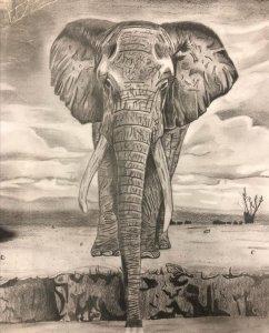 La sed de un elefante