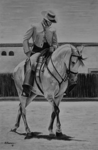 HORSE ANDALUZ WITH RIDER