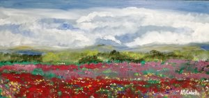 Clouds in the meadow with poppies