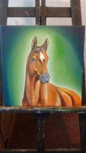 Horse Cortez