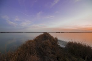 Sunset in Doñana salt flats