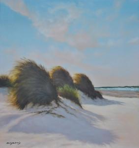 Evening wind on the beach
