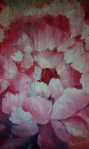 Pink peony flower under the rain