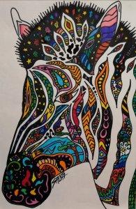 Arte Cebra