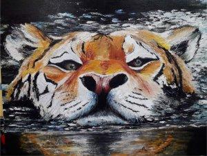 34- Tigre en el agua.jpg