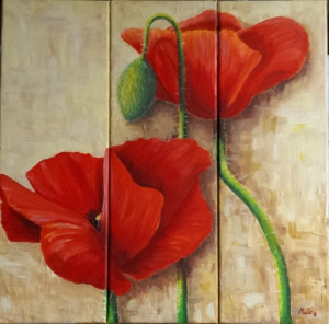 poppies MT