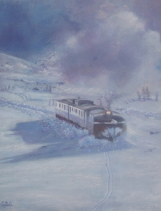 No. 17. X 35 46 snowplow cm.JPG