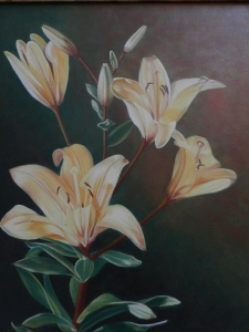 Lilium yellow