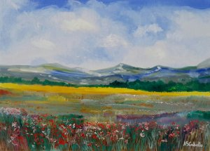 Clouds and meadows