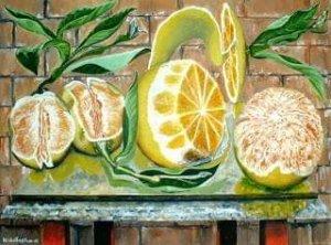 Still life of oranges.