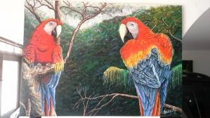 Guacamaya Amazonica