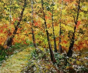 Luminosidad en otoño