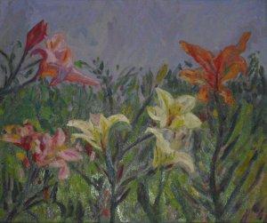 Flowers Magnolias