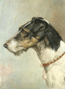Elio Dog - Miniature Portraiture. (1939)