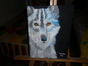 Wolf Look