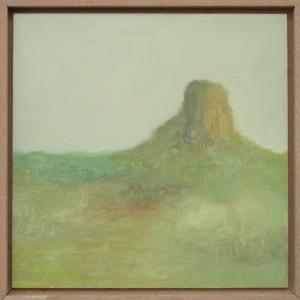 paisaje s/t