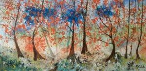 Renacimiento de un bosque