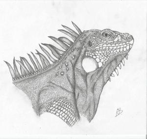 Dibujo Artístico Lápiz Ordenado Por Autor Página 10