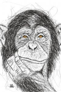 doodle monkey!