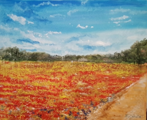 Meadow of poppies