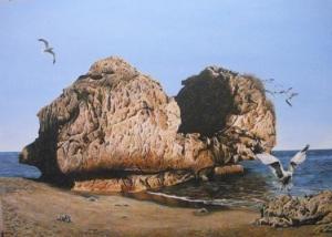 Roca y Gaviotas