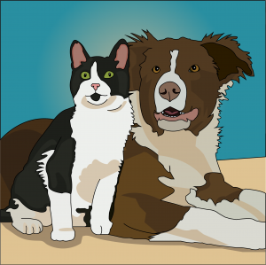 dog and cat.png
