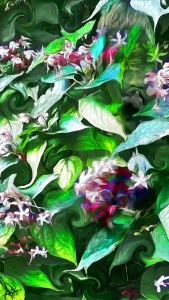 Blooming by Marian Gaztel