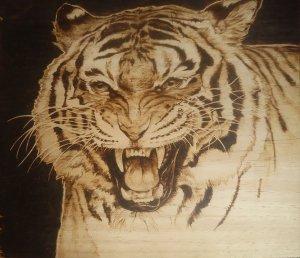 Tiger Pyrography