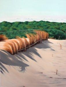 Dunes of Saler I