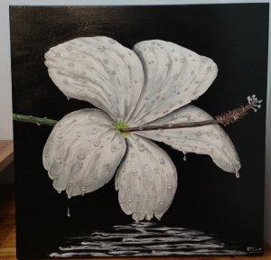 Flor y lluvia