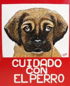 Cuidado con el perro