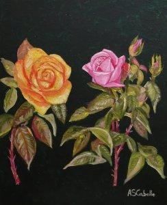 Miradas de Rosas