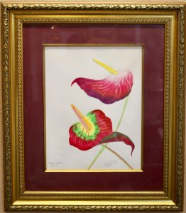 Anthuriums of the Caribbean