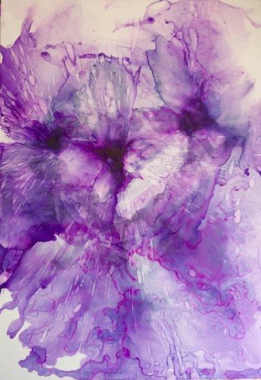 Purple Expansion