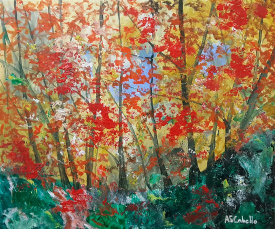 Bosque en pleno otoño