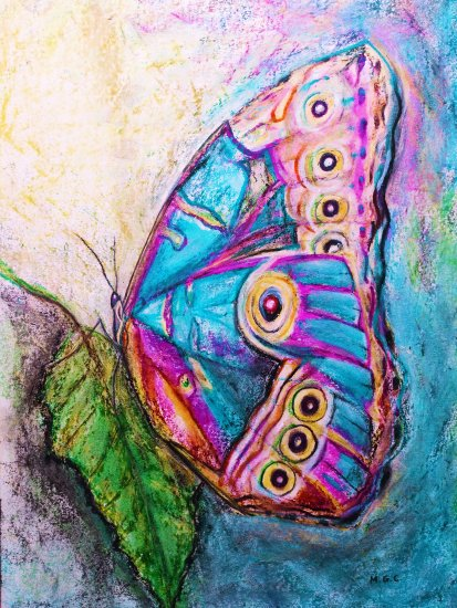 Multicolor butterfly