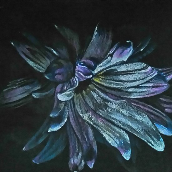 Serie flores