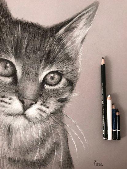 """""""Feline look"""""""