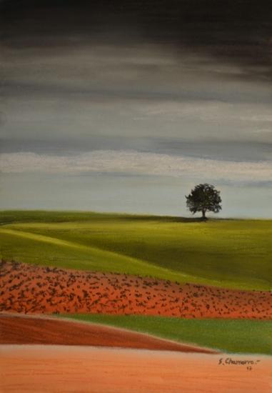 Manchego landscape 1