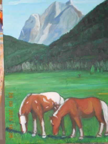 Cavalls the Pirineu