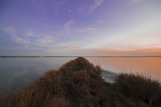 Atardecer en salinas de Doñana