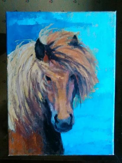Horse Head, 1.6