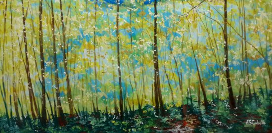 La calma de un bosque
